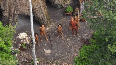 Une tribu dans la forêt amazonienne (diffusée par Survival au début de l'année 2011 afin d'attirer l'attention de l'opinion publique sur la déforestation illégale qui sévit au Pérou)