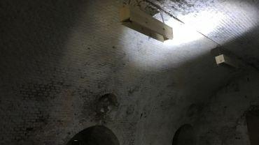 Les nichoirs pour chauves-souris installés au fort de Huy