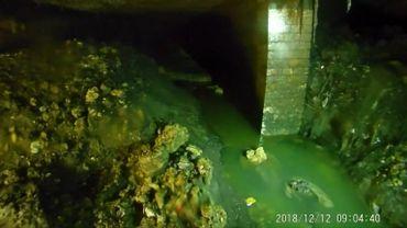 """Une partie du """"fatberg"""", la montagne de graisse retrouvée dans les égouts de Sidmouth, au Sud-ouest du Royaume-Uni"""