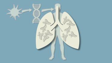 Des bactéries pour guérir de l'asthme.
