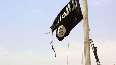 L'Etat islamique serait dans une deuxième phase d'existence, selon Rik Coolsaet.