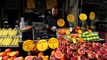 La Russie limite son embargo aux fruits et légumes de Turquie