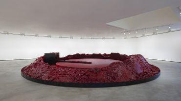 "Anish Kapoor, ""My Red Homeland"", 2003"