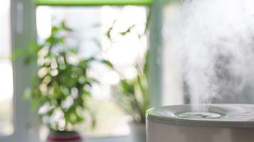5 huiles essentielles pour purifier son intérieur en hiver !