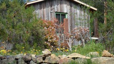 Moins de travail, moins de déchets ! Laissez la nature entrer dans votre jardin !