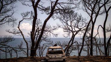 Le bilan des incendies en Grèce s'alourdit à 88 morts