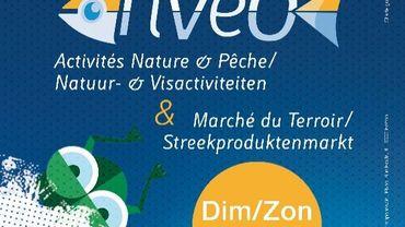 Festival RIVEO & Marché du Terroir