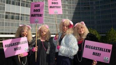 """Des manifestants déguisés en cochons à Bruxelles pour demander une """"agriculture paysanne"""""""