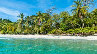"""Résultat de recherche d'images pour """"costa rica photo image"""""""
