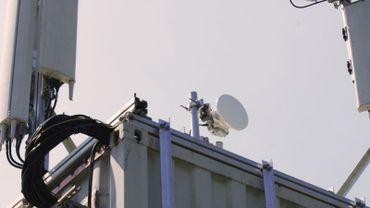 Les opérateurs disposent d'équipements mobiles pour booster la capacité de leur réseau (illustration).