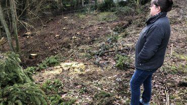 La mort dans l'âme, Muriel a dû se résoudre à faire abattre le bois de sapins derrière chez elle.