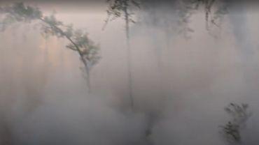 Russie: les incendies se poursuivent en Sibérie avec des températures records