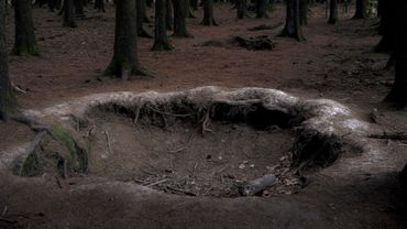 Fox hole Bois Jacques Foy-Bastogne