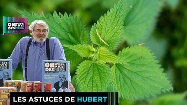 Les astuces d'Hubert: Les vertus de l'ortie