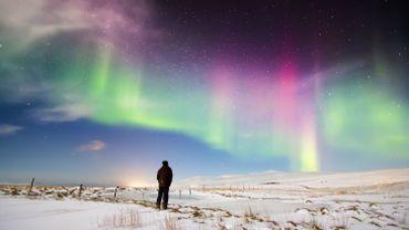 L'installation lumineuse Northern Lights tentera de reproduire les aurores boréales dans le Jardin du Palais Royal en décembre.