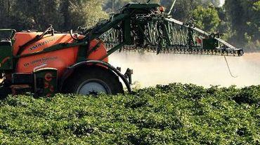Un tracteur épand des pesticides dans un champ à Cassel, le 16 août 2013