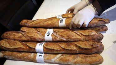 Baguettes lors d'un concours en France