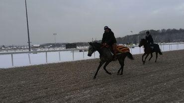 L'Hippodrome de Wallonie sous un manteau blanc