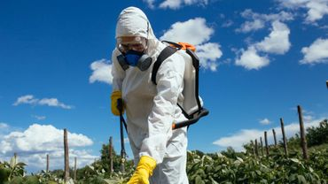 Parkinson: les pesticides menaceraient aussi les riverains