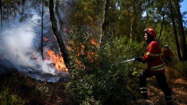Un pompier combat un feu dans une forêt près du village de Bracal le 11 août 2017.