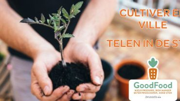 Le Flash Tendance de Candice: le jardinage gourmand