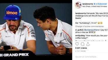 Alonso et Norris