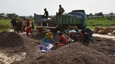 Des employés d'un centre de tri de cacao à Soubré (sud-ouest) en Côte d'Ivoire, le 6 mars 2017