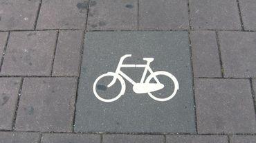 La Région wallonne vient d'accorder 1 million d'euros de subsides à plusieurs projets de mobilité durable en Wallonie. Dont ceux encourageant la pratique du vélo pour se rendre au travail.