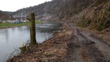 Polémique autour de travaux forestiers à Vresse-Sur-Semois