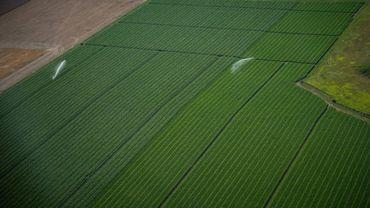 Agriculture intensive à Amboise, le 16 juillet 2017