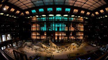 La Grande Galerie de l'Evolution s'est refait une beauté pour ses 20 ans