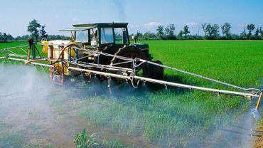 """A partir du 1er juin 2018, il sera en effet interdit d'utiliser des pesticides dans les endroits fréquentés par des groupes qualifiés de """"vulnérables""""."""