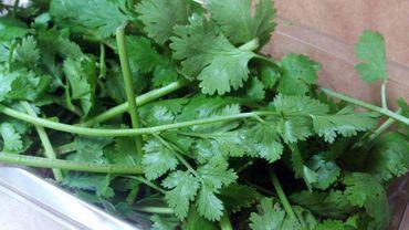 Des herbes aromatiques en cuisine nos 3 recettes du jour - Herbes aromatiques en cuisine ...
