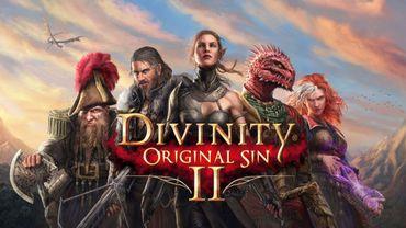 """Divinity: Original Sin II"""