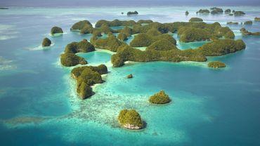 Avec ses eaux cristallines, ses récifs coralliens intacts et sa vie marine abondante, les Palaos sont considérés comme un des meilleurs spots de plongée au monde.