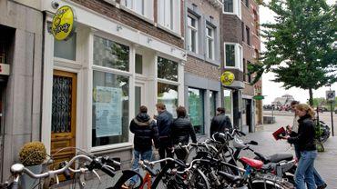 Maastricht: 6 coffee shops condamnés pour vente de cannabis à des étrangers