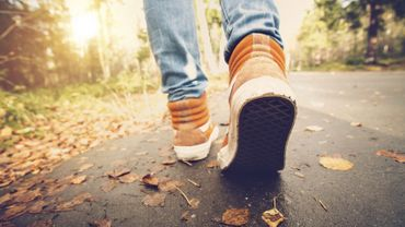 5 promenades à faire ce dimanche dans votre région