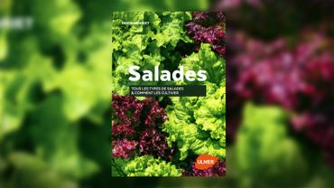 """Livre : """"Salades - Tous les genres & comment les cultiver"""""""