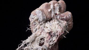 Liège: la Biennale de la Photographie devient la Biennale de l'Image Possible