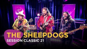 The Sheepdogs en set acoustique