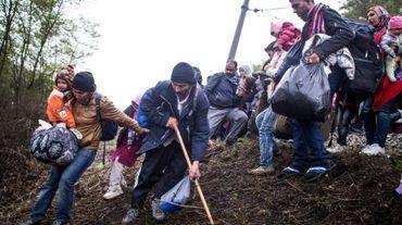 Des migrants descendent une colline après avoir quitté un camp de réfugiés à la frontière avec la Slovénie, le 23 octobre 2015 à Spielfeld, en Autriche