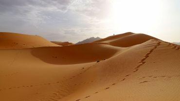 """83 migrants sauvés au Niger : """"Nous avons passé trois jours ici sans nourriture ni eau"""""""