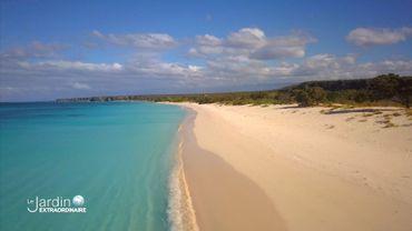Plages dorées, mer turquoise, c'est la République Dominicaine !