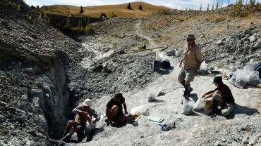 Photo non datée fournie le 11 janvier 2018 par Te Papa Museum montre des scientifiques sur le site de fouilles de St Bathans, en Nouvelle-Zélande