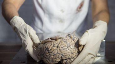 Le processus de décision humain serait largement opéré par une activité mentale inconsciente.