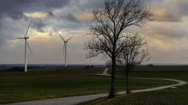 L'éolien wallon plombé par le phénomène Nimby
