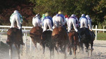 C'est en milieu d'après-midi que l'Hippodrome de Wallonie vous propose de vivre une réunion mixte de 12 courses