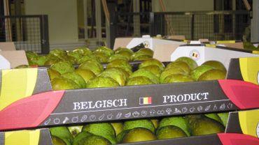 Le Canada autorise l'importation de poires belges