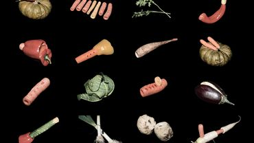 """""""The Vegetable Orchestra"""" lance son crowdfunding"""