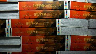 """Une école catholique américaine retire les livres """"Harry Potter"""" à cause de leur """"magie perverse"""""""